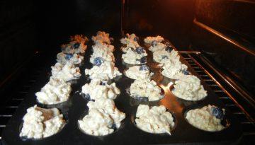 Muffins zum Hundegeburtstag © Pfotentour
