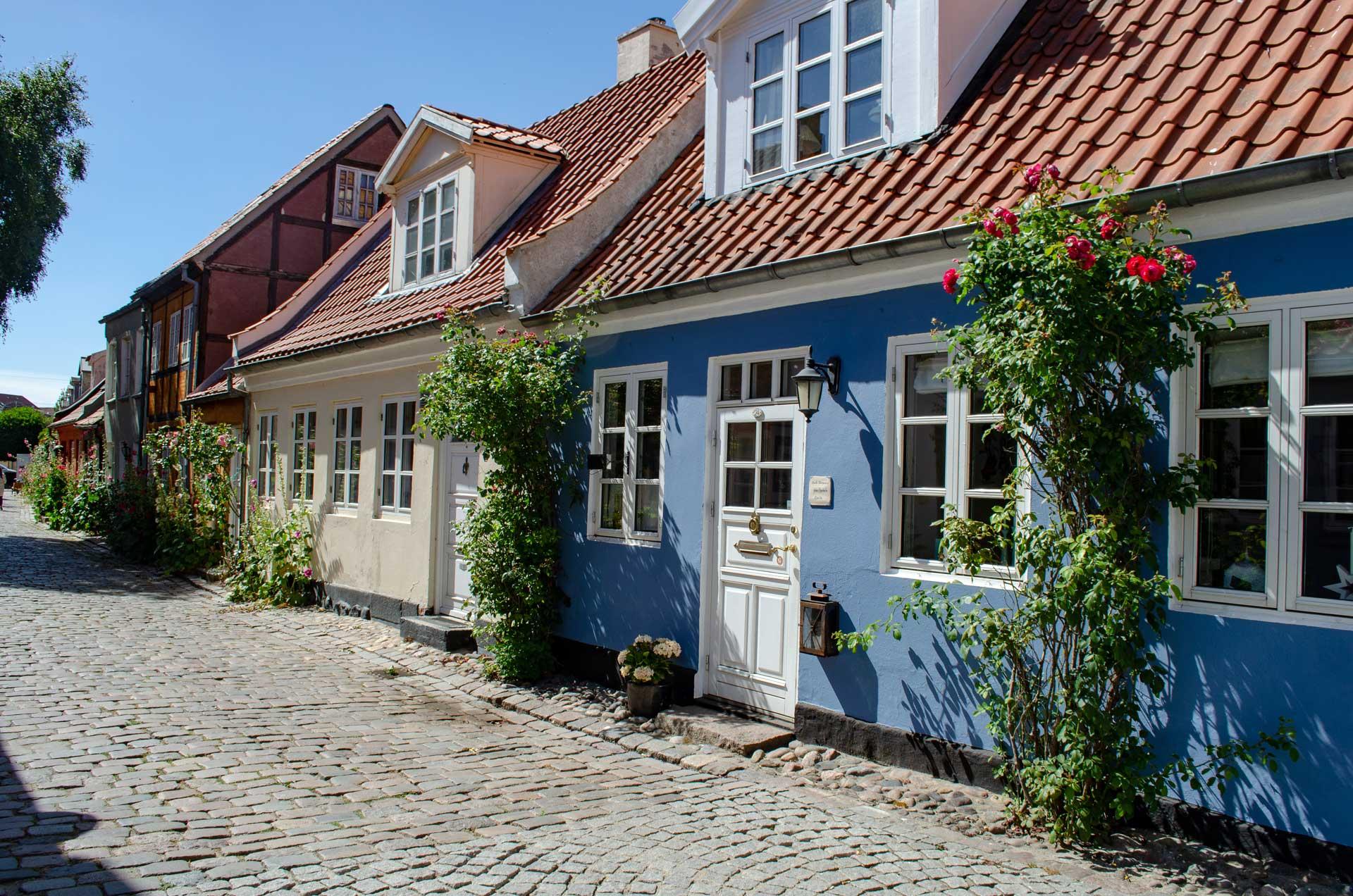 Aarhus Møllestien © Pfotentour