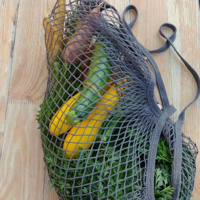 Gemüse aus dem Hofladen Dahmsdorf © Pfotentour