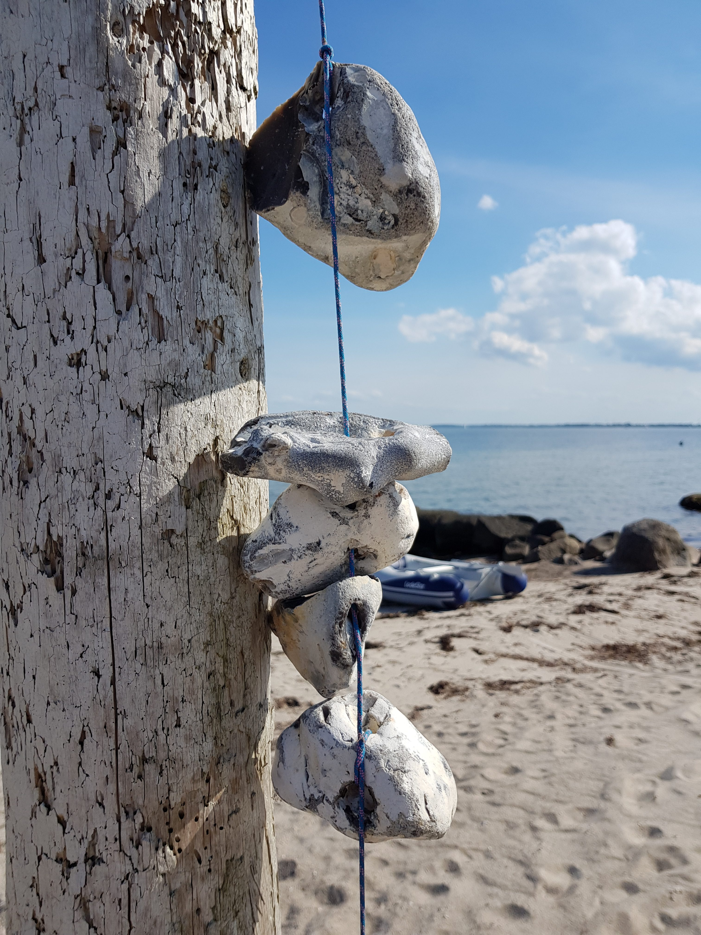 Großenbrode – MeerZeit am Fehmarnsund © Pfotentour