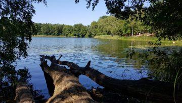 Kirschen pflücken und baden am kleinen Lienewitzsee © Pfotentour